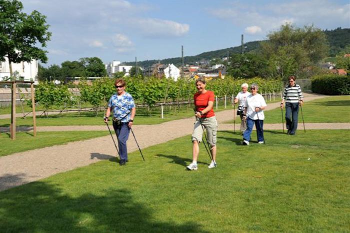 Nordic Walking im Park am Mäuseturm 3