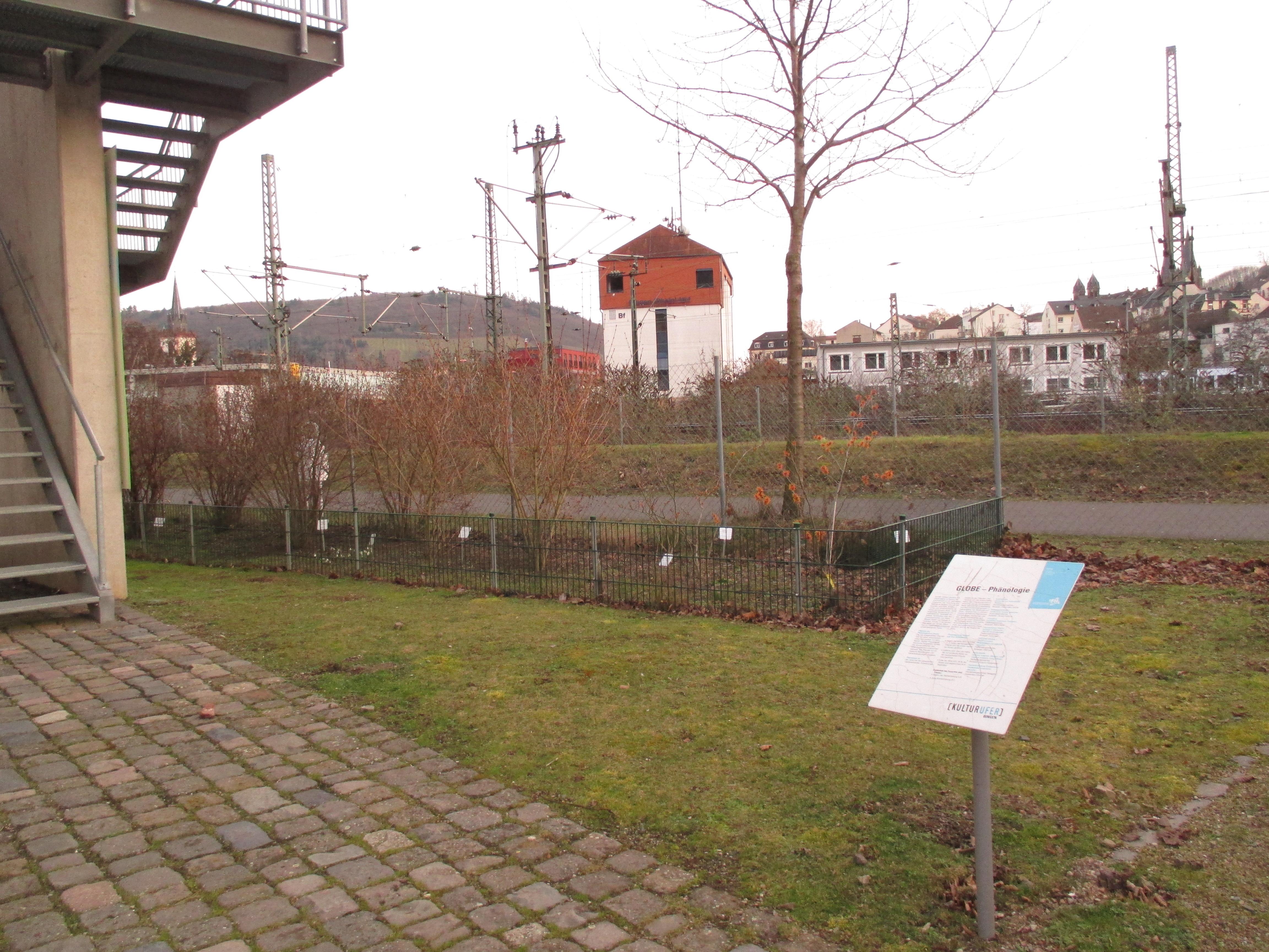 Phänologischer Garten